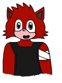 Kao the Cat