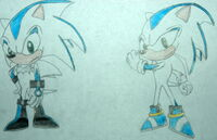 Surge the hedgehog concept