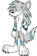 Paws the Wolf - Sonic