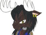 Gideon the Moose
