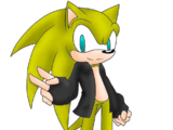Electric The Hedgehog