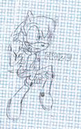 Erizo Sketch