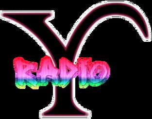 Y-Radio Logo