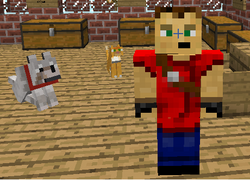 Me in Minecraft plus my pets