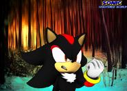 SSW Shadow
