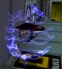 350px-Sa2 sparkbeetle