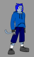 Kinnik the Wildcat