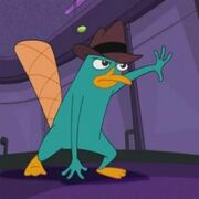 Perry 3