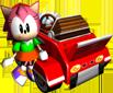 Amy2 Artwork - Sonic R