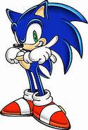 Sonic 17