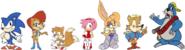 Sonic Satam Groups