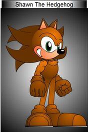 Shawn The Hedgehog