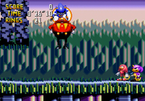 640px-Knuckles and Espio Seeing Eggman escape