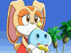 Sonic X - 09 - Coquillages et crustaces