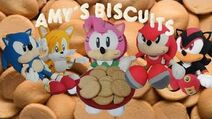Sonic the Hedgehog - Amy's Biscuits-3