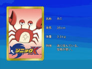 CrabEyecatch
