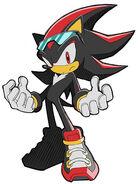 Riders-Shadow-shadow-the-hedgehog-6831113-374-500