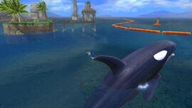 StH(2006) Orca 2
