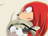 094knuckles