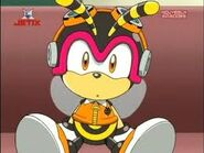 Charmy in Sonic X