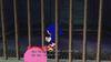 Sonic und Amy Rose Prison Island 2