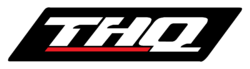 THQ 2000 logo
