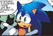 Sonic 67455