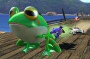 Froggy S&SAR