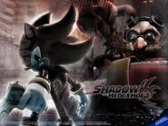 Shadow w.