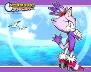 Sonic Rush Adventure Wallpaper 04 a