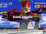 Egg Hawk