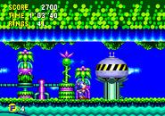 Sonic CD Kapsel