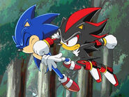 Sonic-Shadow-sonic-shadow-and-silver-30120872-640-480