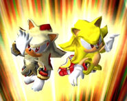 Super Sonic & Super Shadow