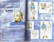 Hawkdesign