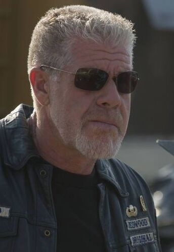 who plays clay on sons of anarchy