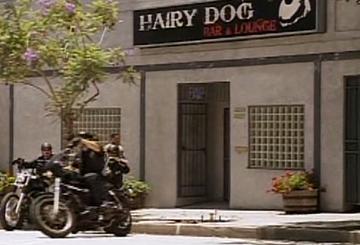 Hairy Dog Lounge