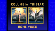 Columbia TriStar Home Entertainment Logo 1993 Columbia TriStar Home Video