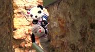 Sooty'sABCAdventure24