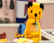 CowCaperstitlecard