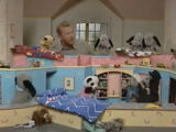 Sweep's Family (The Sooty Show)