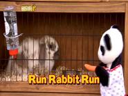 RunRabbitRuntitlecard
