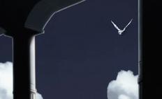 Blauer Vogel (2)