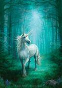 Elaine Unicorn
