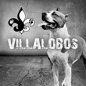 File:Villalobos.jpg