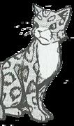 Leoparditähti-manga