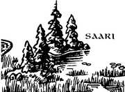 Saari