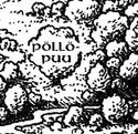 Pollopuu
