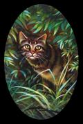 Tiikeritähti (etusivu)
