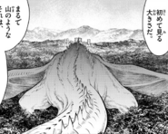 Ch 047 50m Dragon